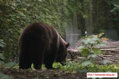 2017-09-22 - Zoo Wuppertal 50